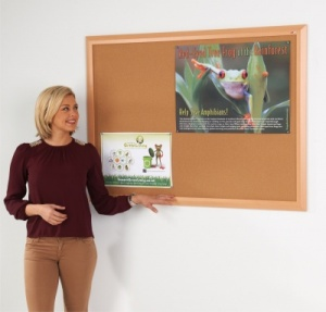 Eco-Friendly Premier Cork Notice Board