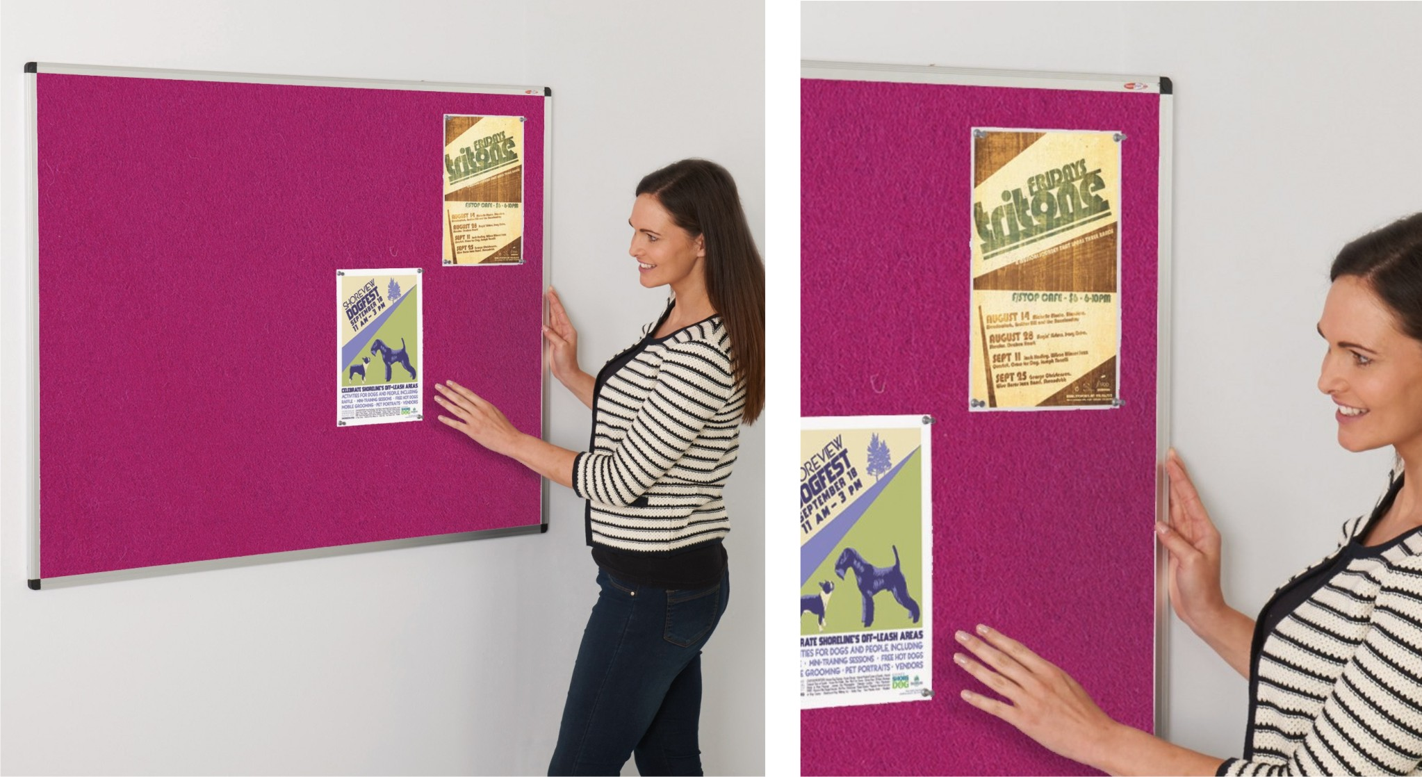 Colourplus Noticeboards