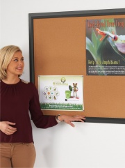 Eco-Friendly Premier Black Framed Cork Notice Board