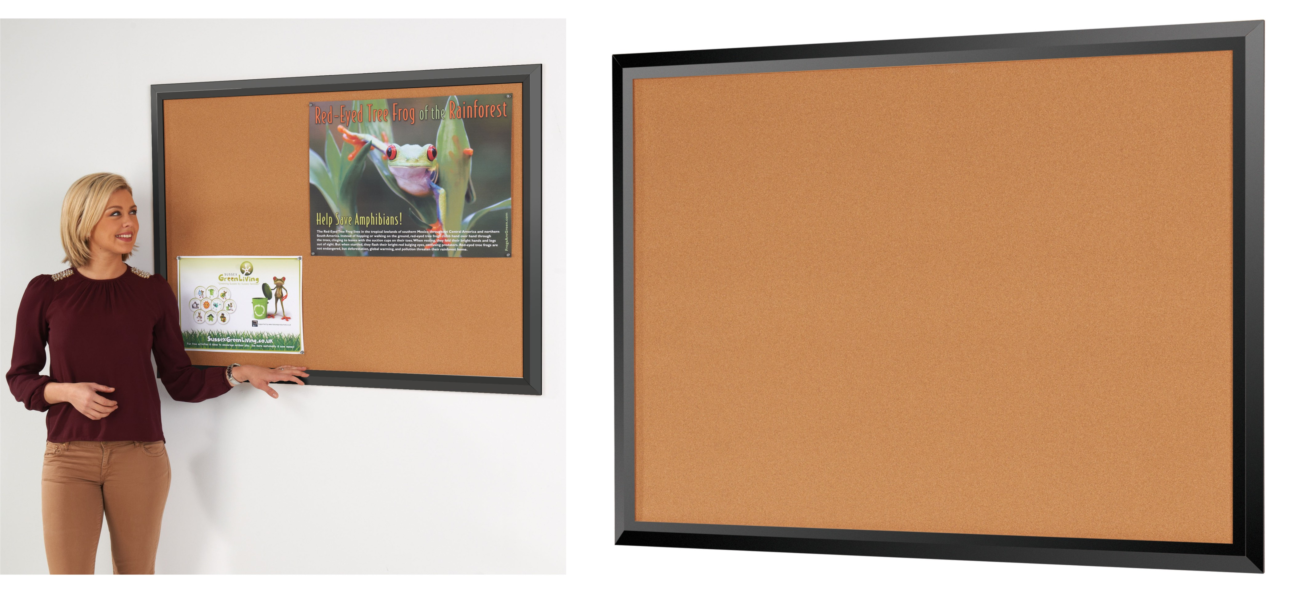 Eco-Friendly Premier Black Framed Cork Notice Boards